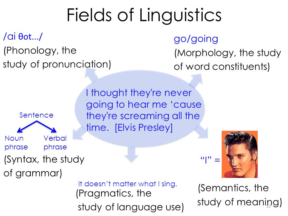 Fields of Linguistics /ai θot.../ go/going (Phonology, the