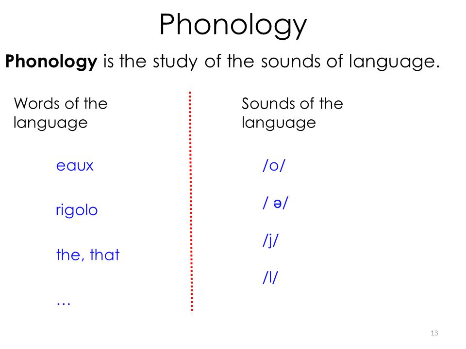 Phonology Phonology is the study of the sounds of language.