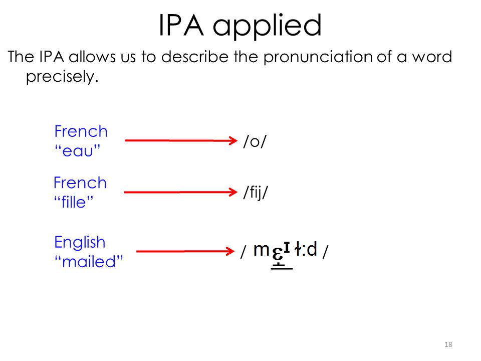 IPA applied The IPA allows us to describe the pronunciation of a word precisely. French eau /o/