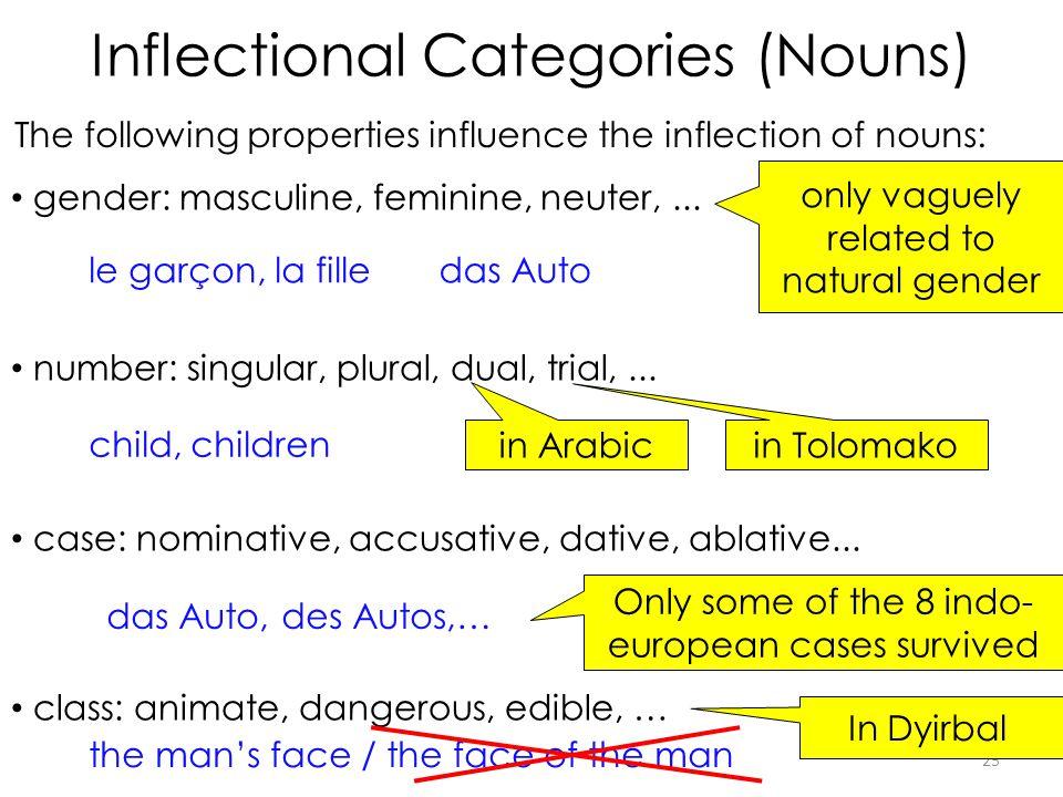 Inflectional Categories (Nouns)