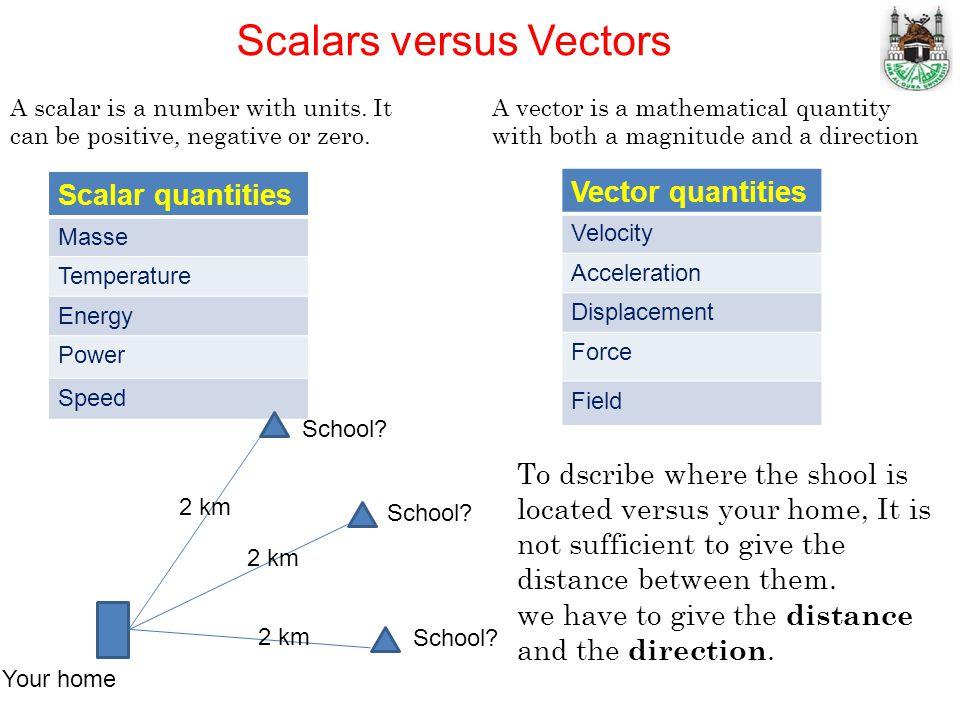 Scalars versus Vectors