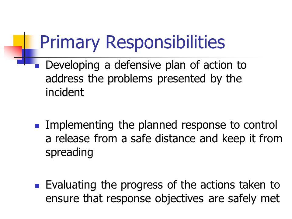 Primary Responsibilities
