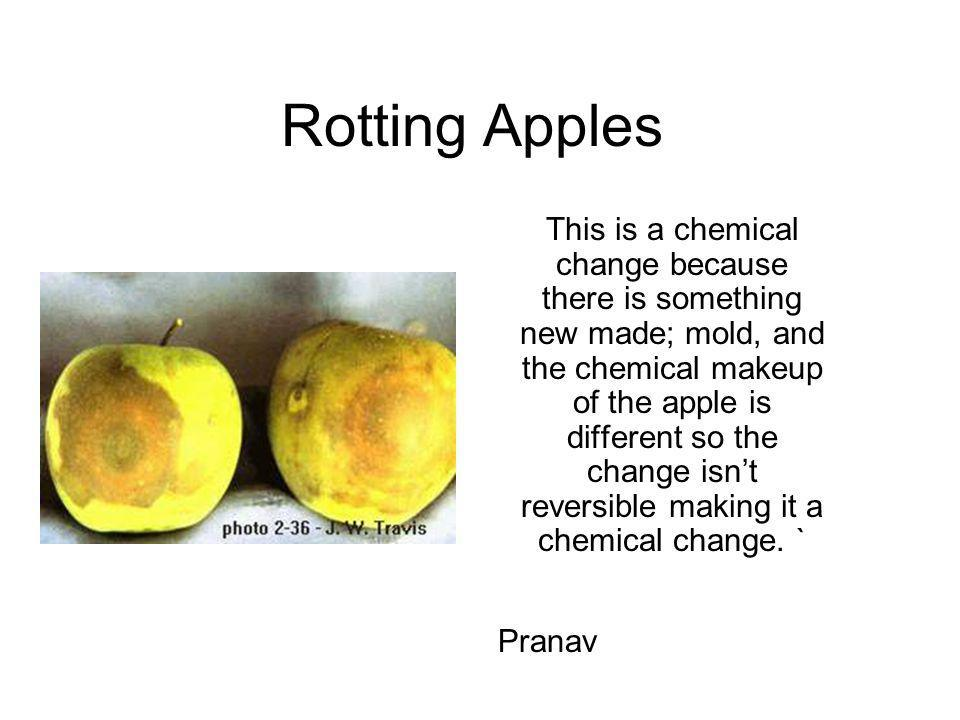 Rotting Apples