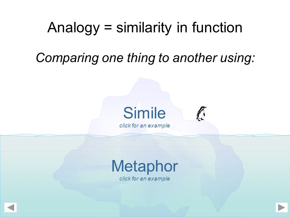 Analogy = similarity in function