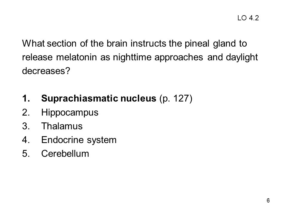 What section of the brain instructs the pineal gland to