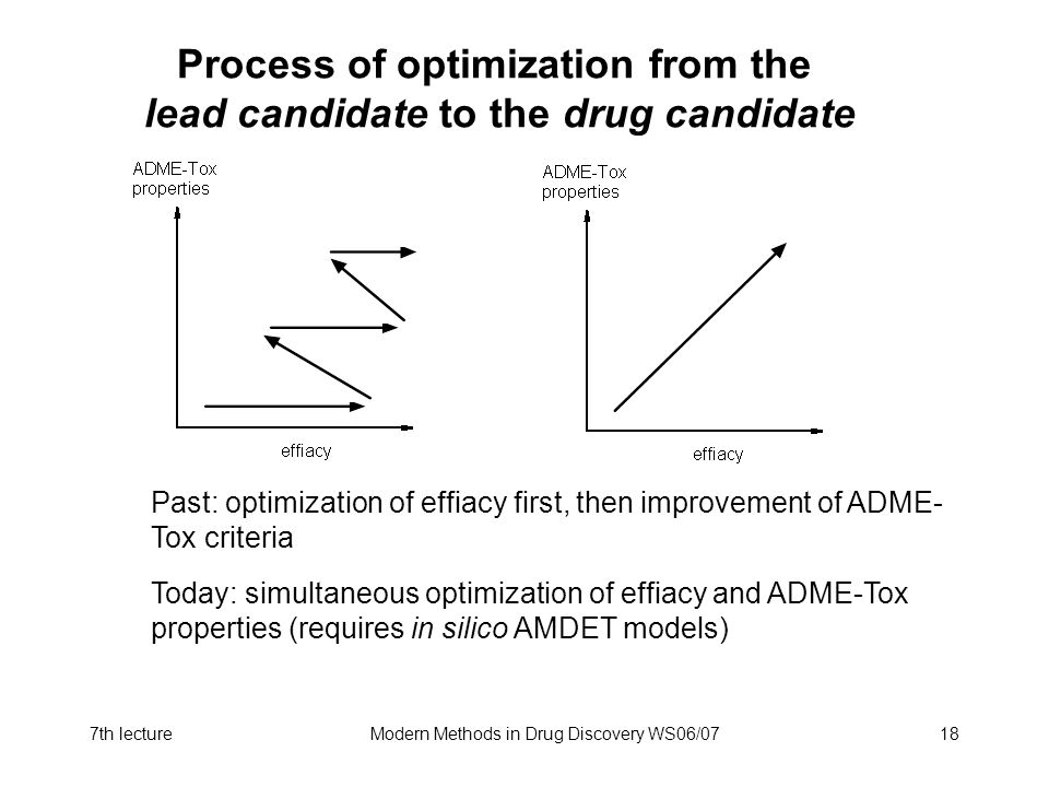 Process of optimization from the lead candidate to the drug candidate