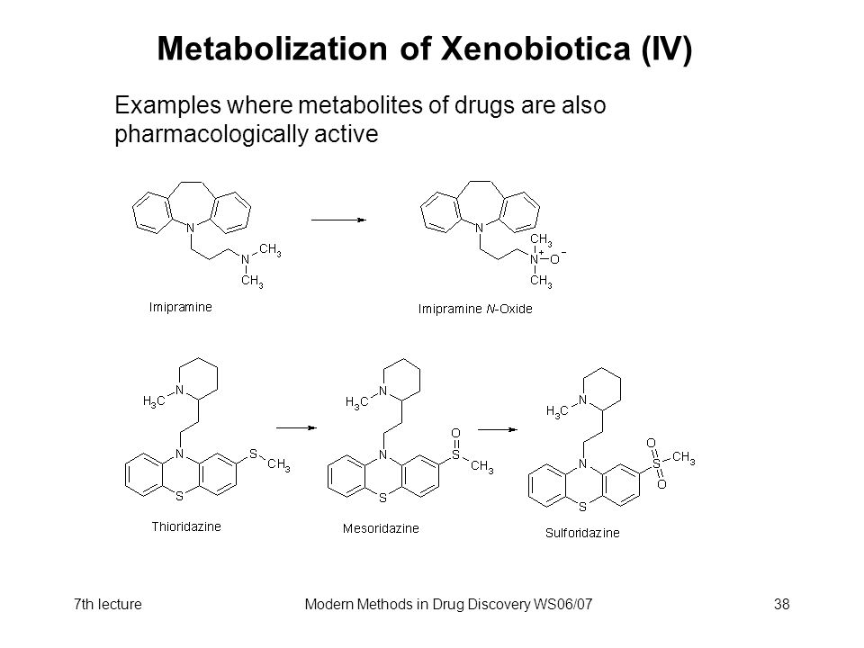 Metabolization of Xenobiotica (IV)