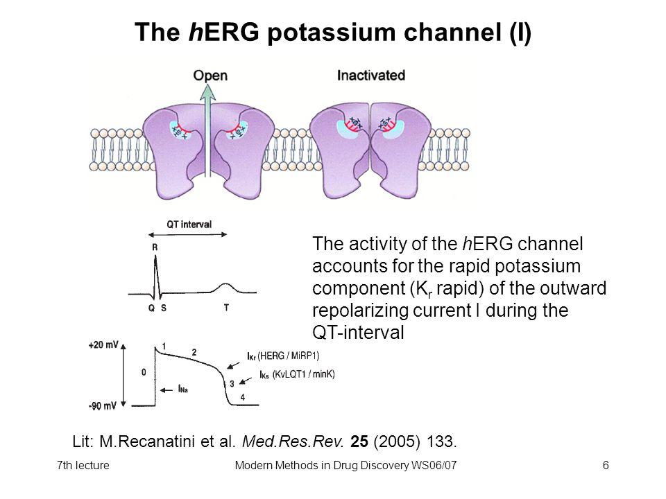 The hERG potassium channel (I)
