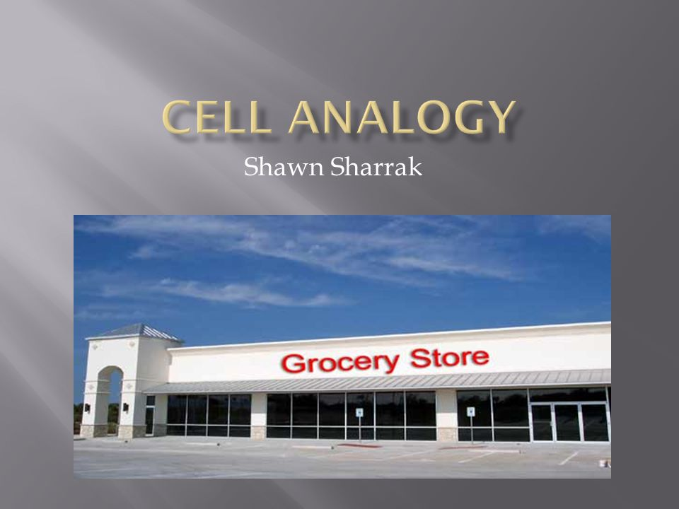 Cell Analogy Shawn Sharrak