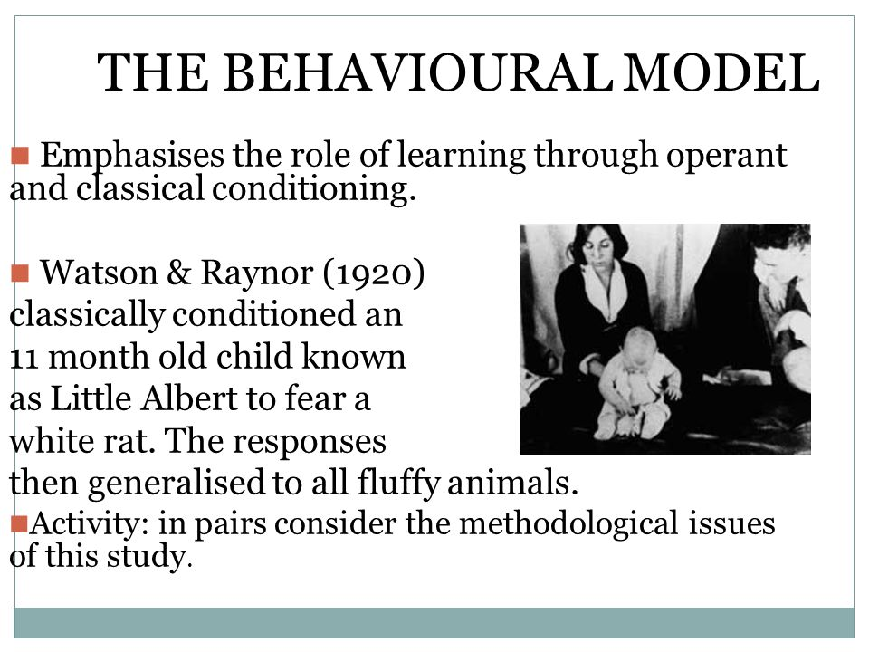 THE BEHAVIOURAL MODEL Emphasises the role of learning through operant and classical conditioning. Watson & Raynor (1920)