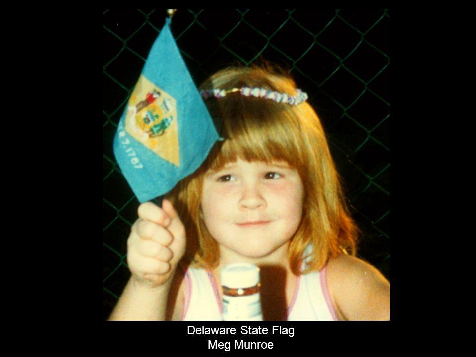 Delaware State Flag Meg Munroe