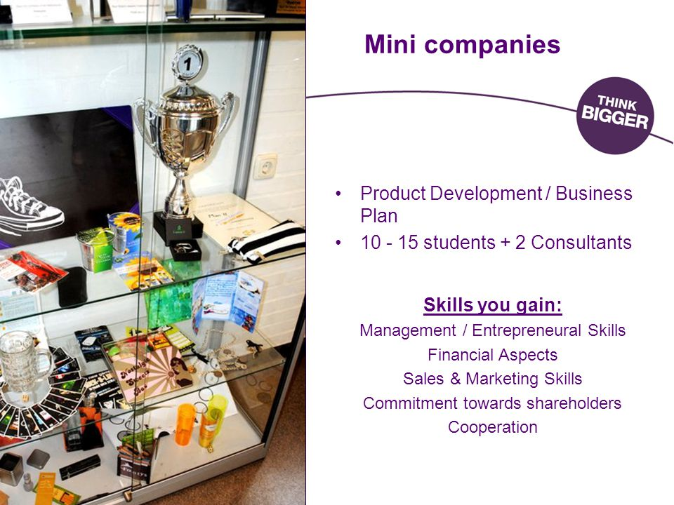 Mini companies Product Development / Business Plan