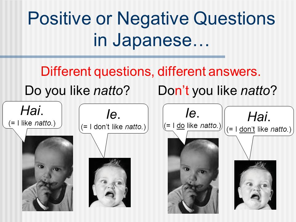 Positive or Negative Questions in Japanese…
