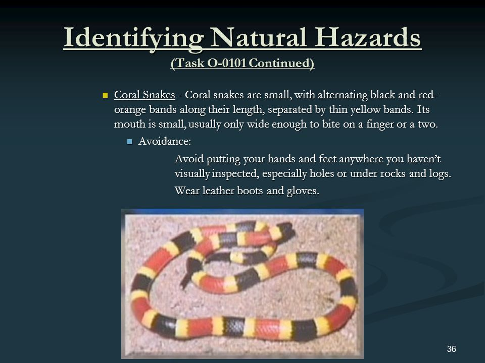 Identifying Natural Hazards (Task O-0101 Continued)