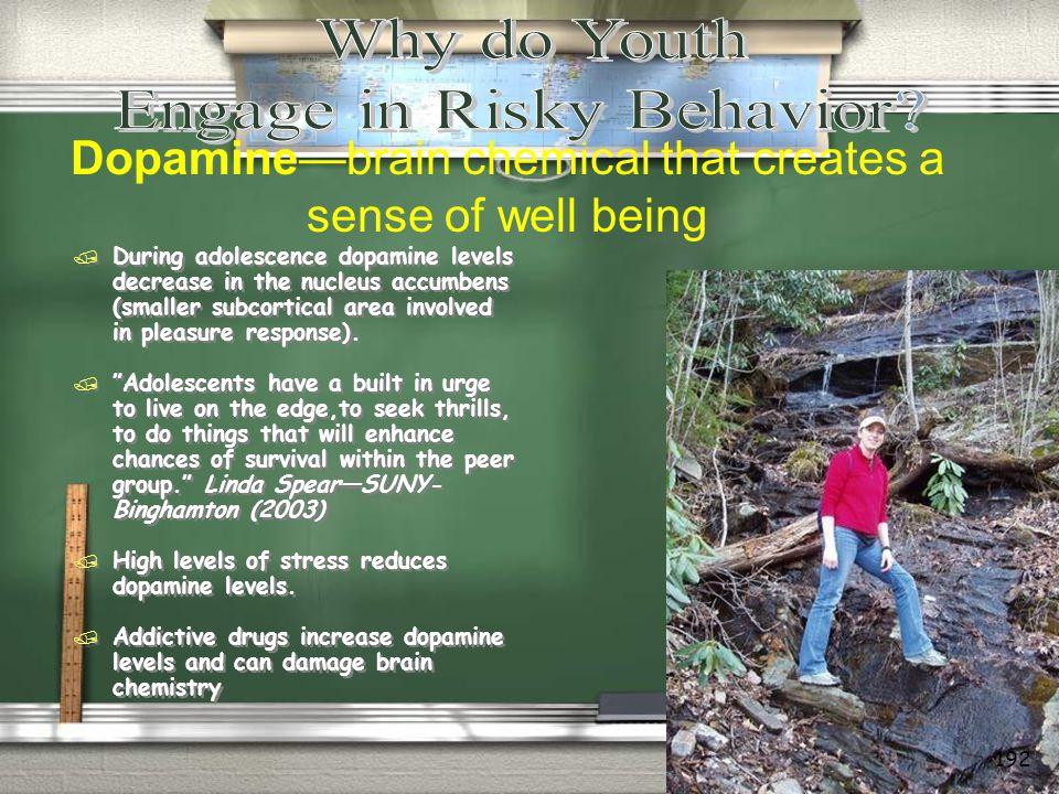 Engage in Risky Behavior
