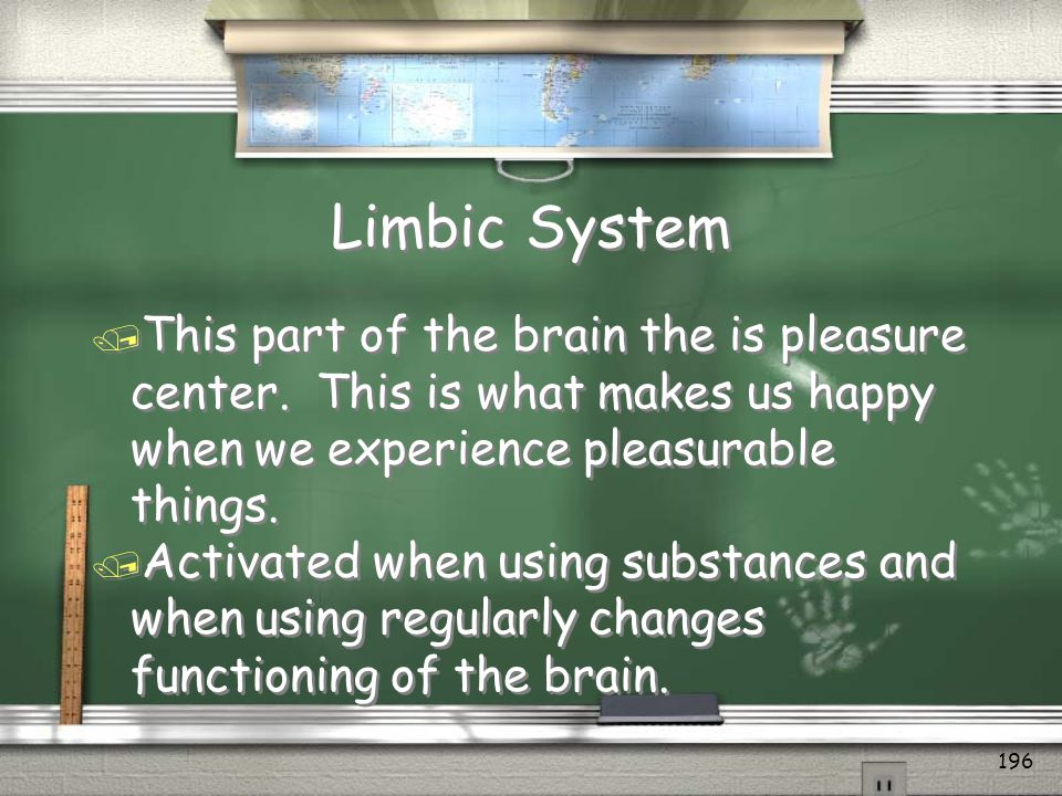 Limbic System This part of the brain the is pleasure center. This is what makes us happy when we experience pleasurable things.