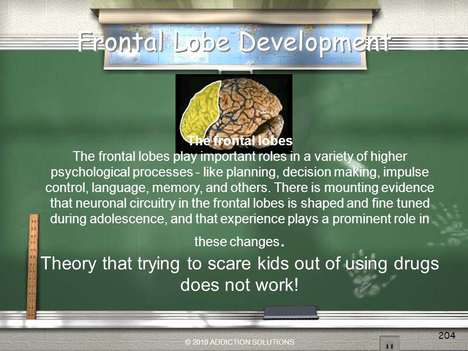 Frontal Lobe Development