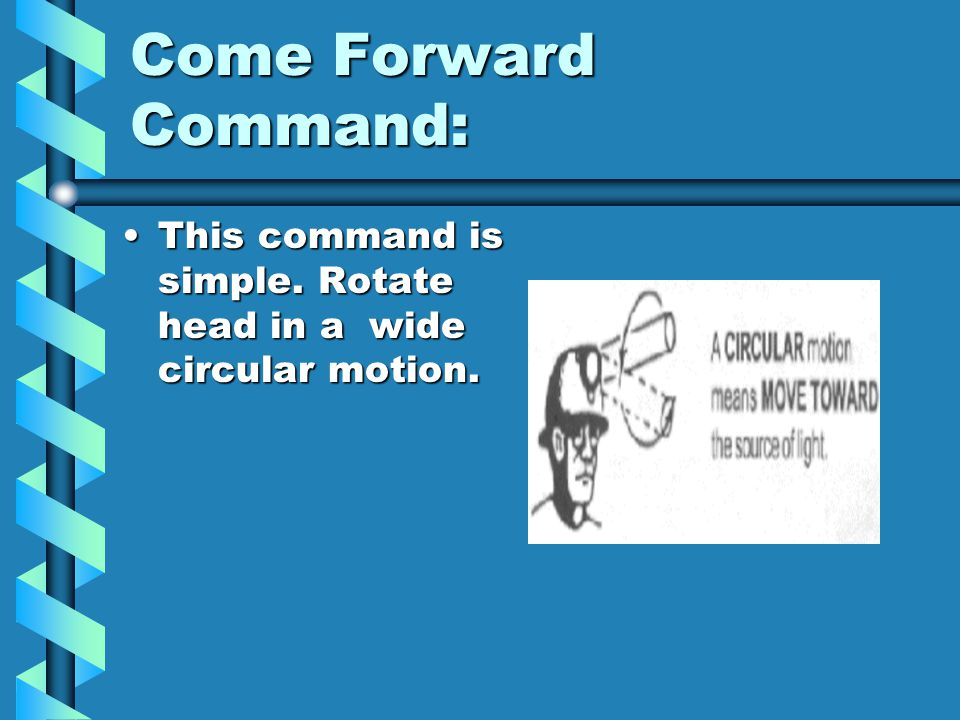 Come Forward Command: This command is simple. Rotate head in a wide circular motion.