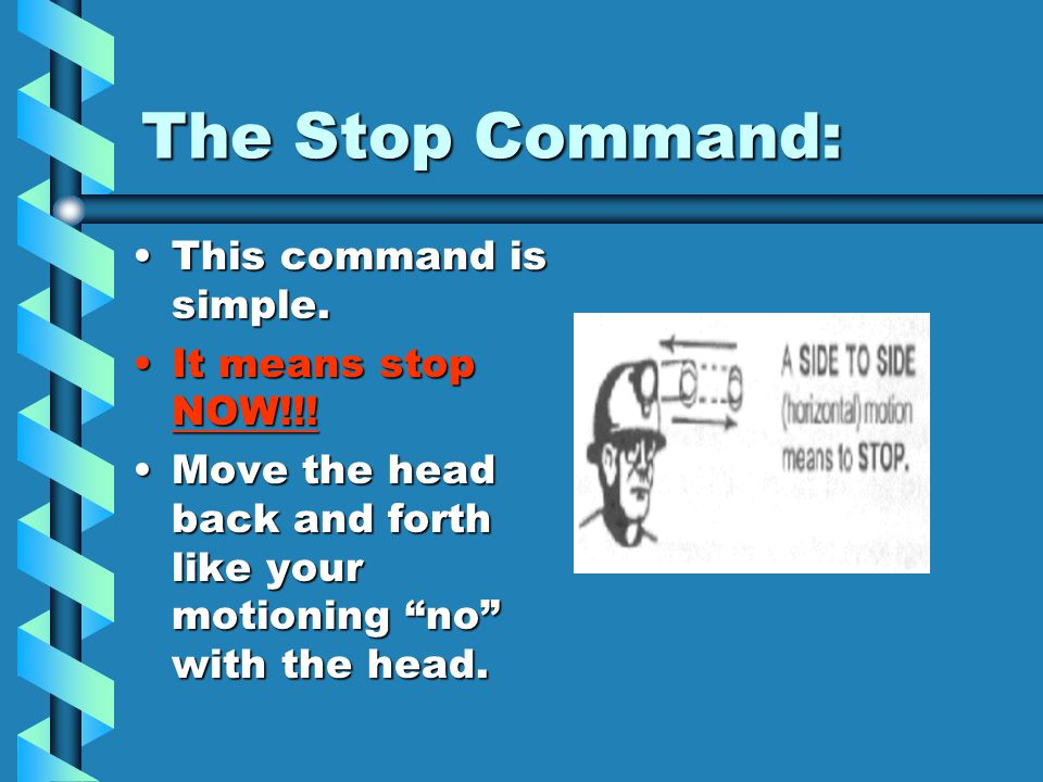 The Stop Command: This command is simple. It means stop NOW!!!