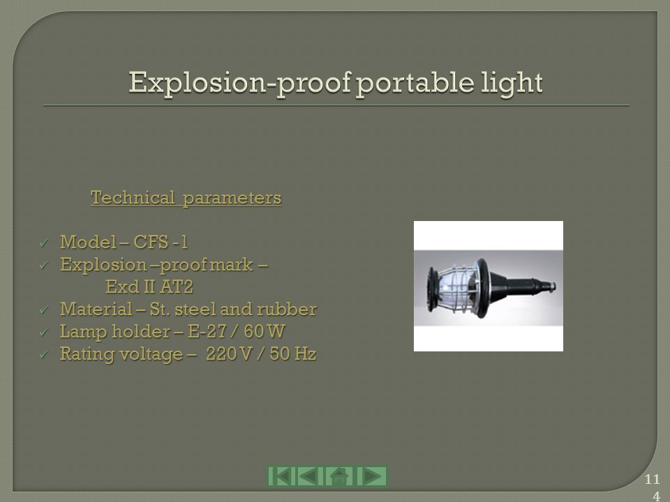 Explosion-proof portable light