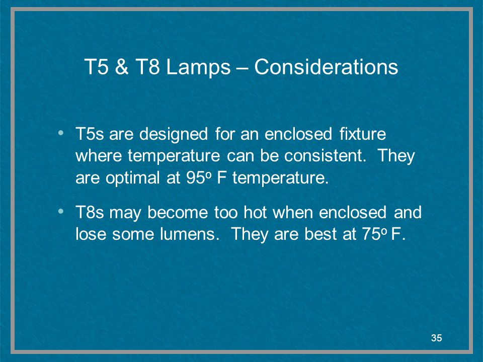 T5 & T8 Lamps – Considerations