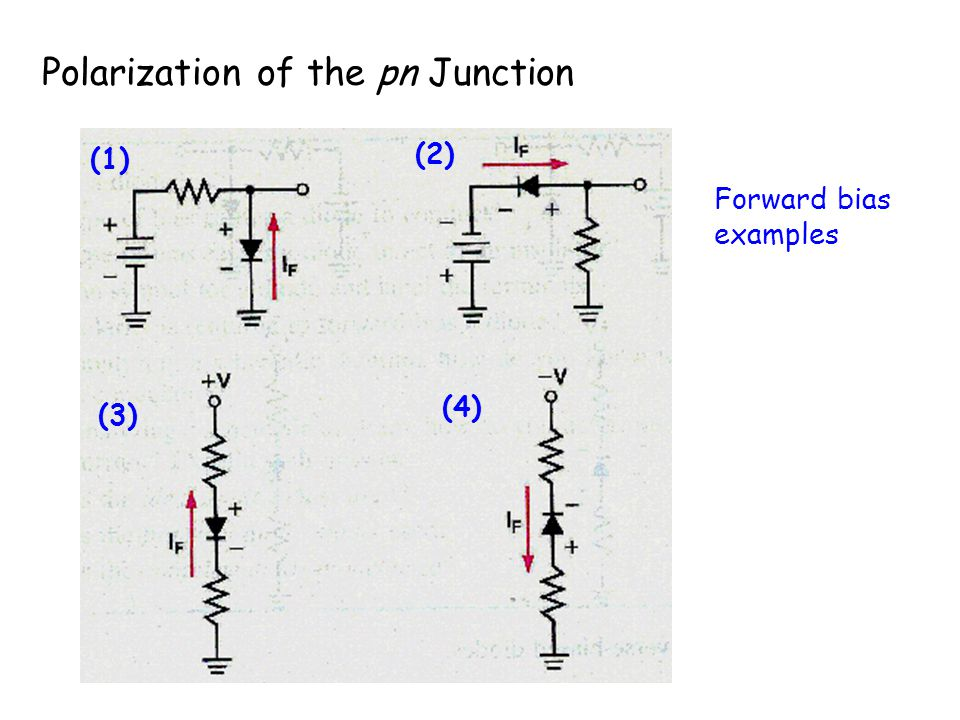 Polarization of the pn Junction