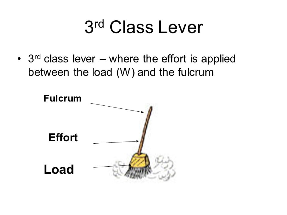 3rd Class Lever 3rd class lever – where the effort is applied between the load (W) and the fulcrum.