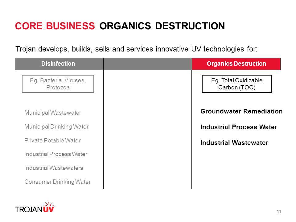 CORE BUSINESS ORGANICS DESTRUCTION