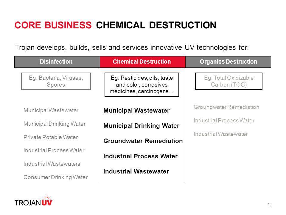 CORE BUSINESS CHEMICAL DESTRUCTION
