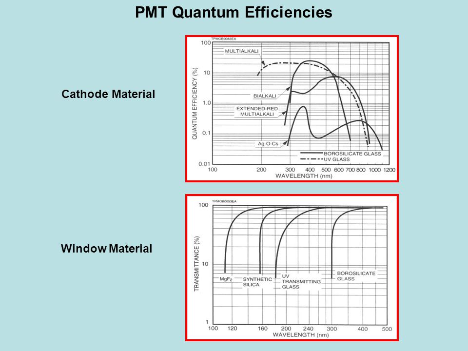 PMT Quantum Efficiencies