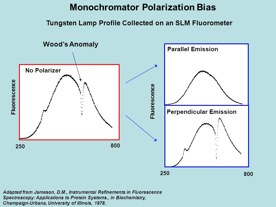 Monochromator Polarization Bias