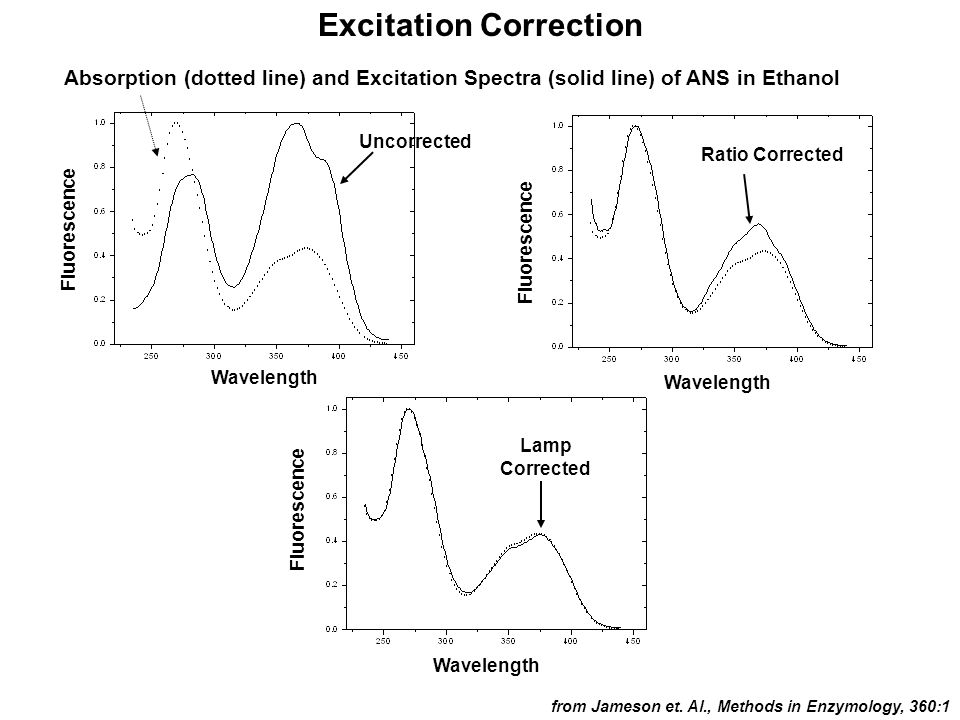 Excitation Correction