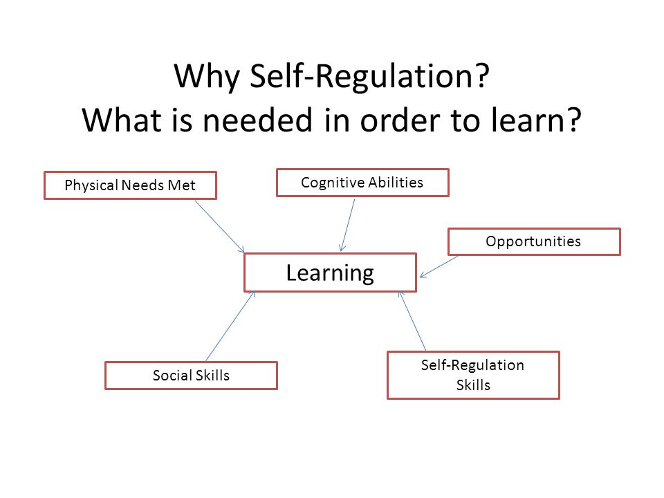 Why Self-Regulation What is needed in order to learn
