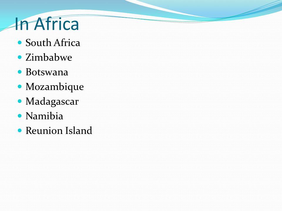In Africa South Africa Zimbabwe Botswana Mozambique Madagascar Namibia