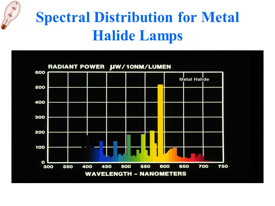 Spectral Distribution for Metal Halide Lamps