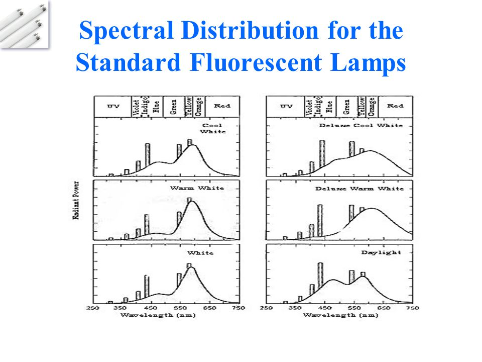 Spectral Distribution for the Standard Fluorescent Lamps
