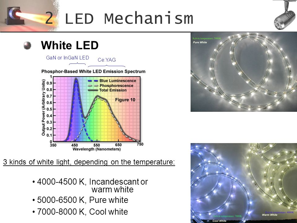 2 LED Mechanism White LED 4000-4500 K, Incandescant or warm white