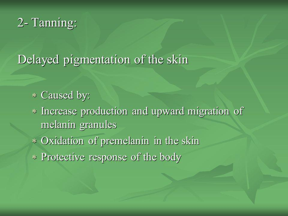 Delayed pigmentation of the skin