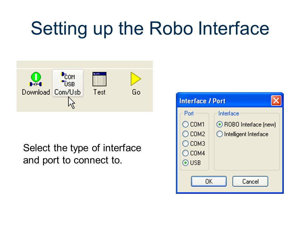 Setting up the Robo Interface