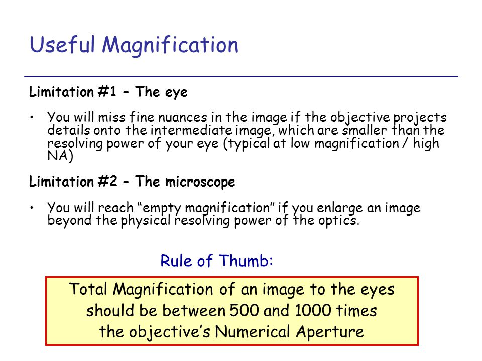 Useful Magnification Rule of Thumb: