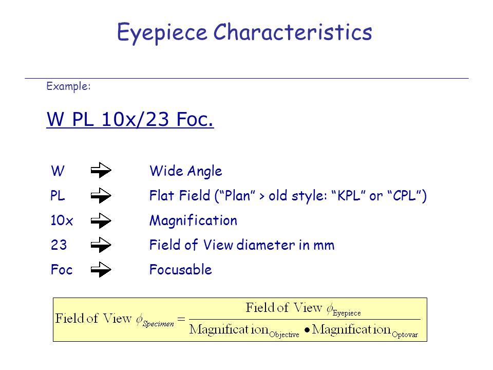 Eyepiece Characteristics