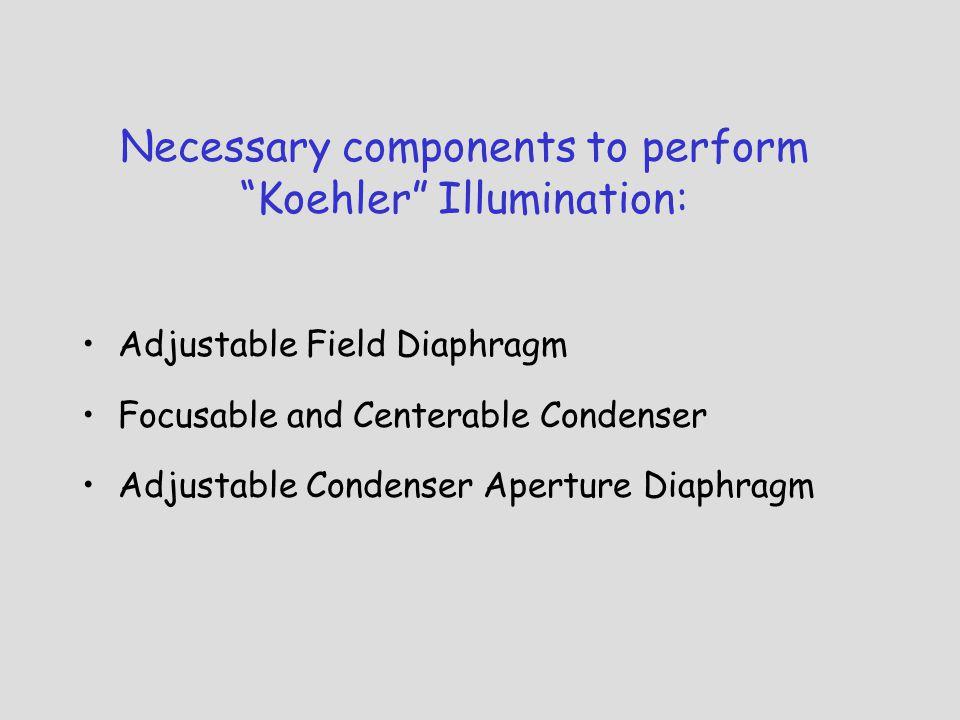 Necessary components to perform Koehler Illumination: