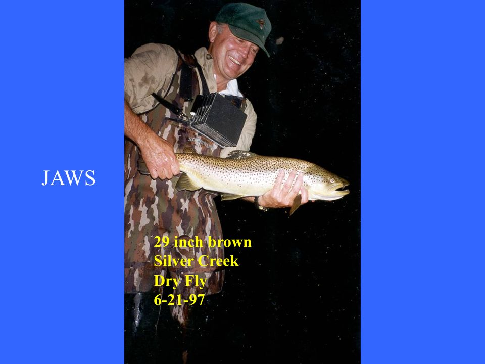 JAWS 29 inch brown Silver Creek Dry Fly 6-21-97