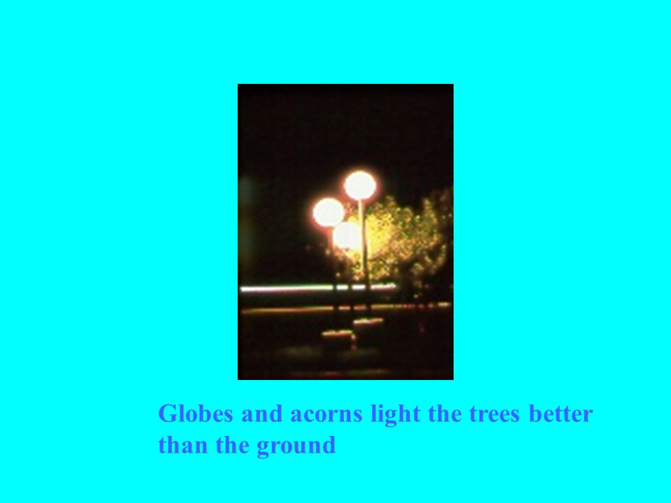 Globes and acorns light the trees better