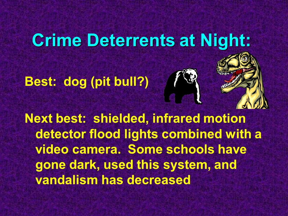 Crime Deterrents at Night: