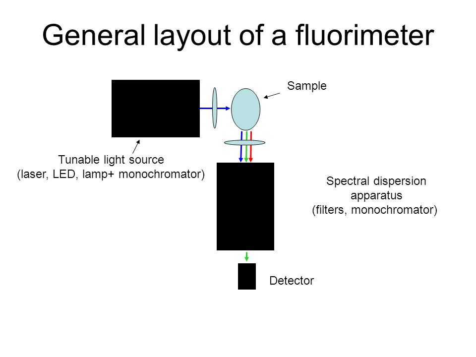 General layout of a fluorimeter