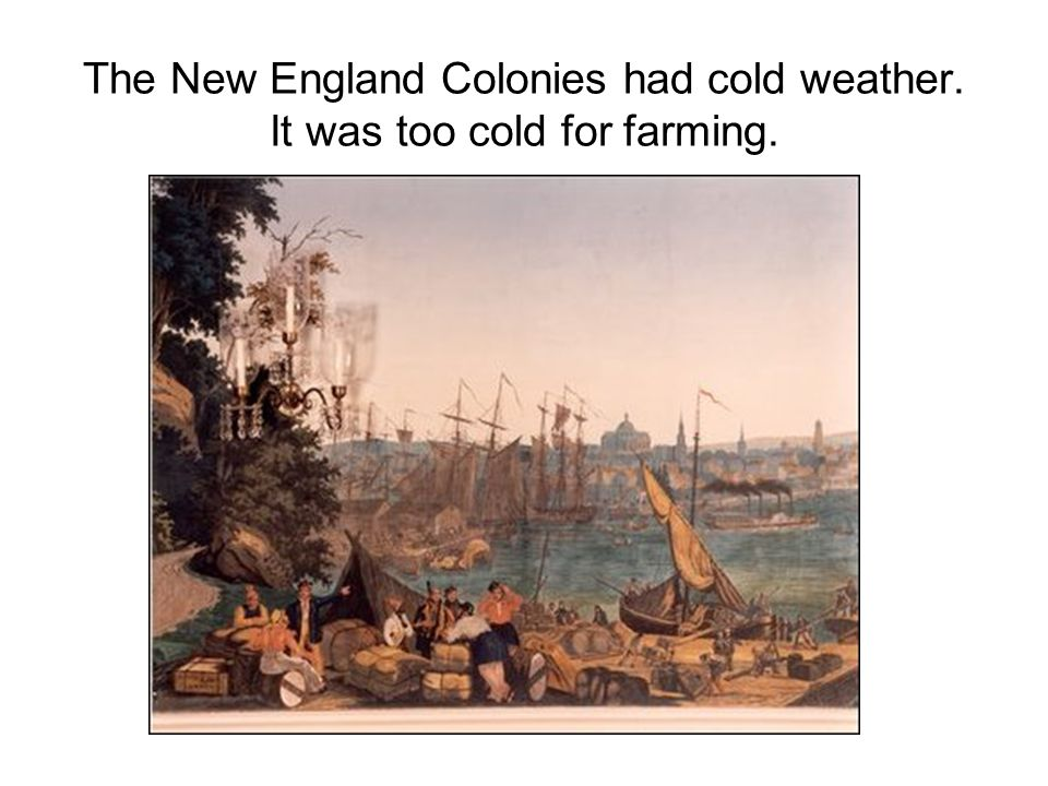 The New England Colonies had cold weather. It was too cold for farming.