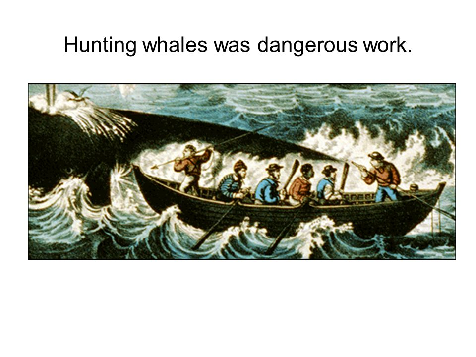 Hunting whales was dangerous work.