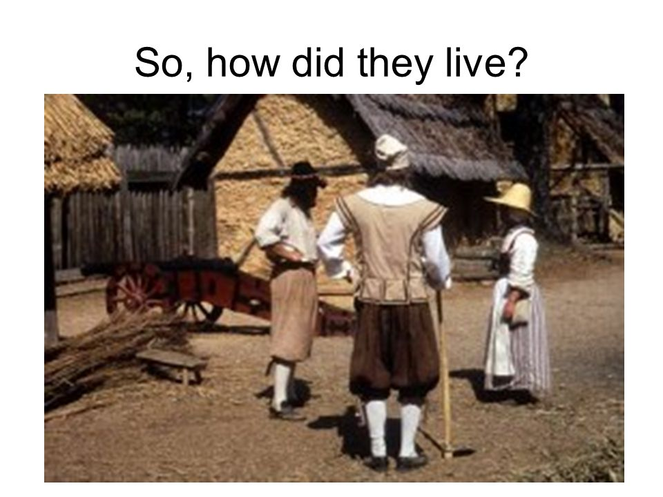 So, how did they live