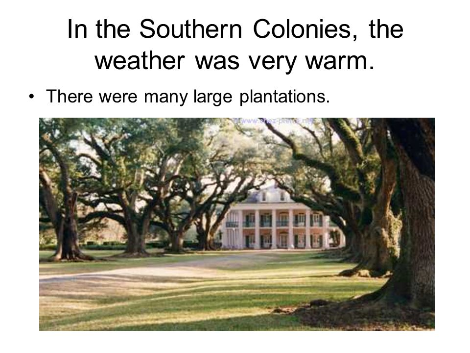 In the Southern Colonies, the weather was very warm.
